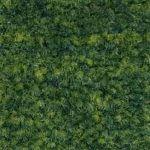 29 Grass (PMS 2278C)
