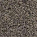53 Grey (PMS 430C)