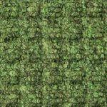 Light Green #53